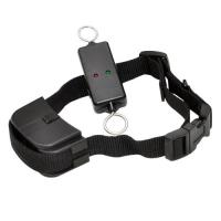 Buy cheap Efficient Remote Pet Training Collar , Leash-Walking Dog Training Device from wholesalers