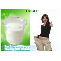 Buy cheap Orlistat CAS 96829-58-2 Weight Loss Powder lipid lowering , losing weight steroids from wholesalers