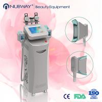 Buy cheap salon cryolipolysis machine,vertical cryolipolysis weight loss,cryolipolysis rf slimming from wholesalers