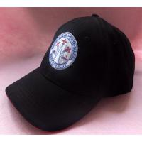 Buy cheap 2011 Custom Embroidery Baseball Hat (20111013) from wholesalers