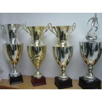 Buy cheap Sports Awards trophies – extra large trophies from wholesalers
