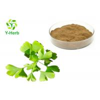 Buy cheap Dried Ginkgo Biloba Leaf Extract Powder Water Soluble Flavones 24% Lactones 6% from wholesalers