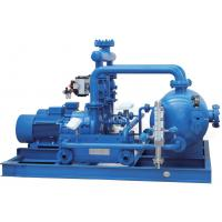 China Professional Water Ring Vacuum Pump Units Energy  Saving Mechanical Seal on sale