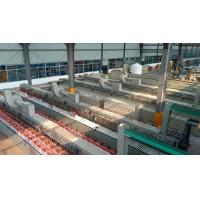 Buy cheap Green technology lead acid battery chemical formation line from wholesalers