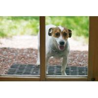 China Puncture Resistant Patio Screening Pet Resistant Screen Protect Pets on sale