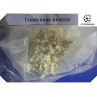 Buy cheap 10161-34-9 Injectable Oral Trenbolone Steroid / 99% Trenbolone Acetate Safest Source yellow crystalline powder from wholesalers