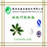 Buy cheap Chinese herbal extract 100% Natural ingredient 10-30% Corosolic acid(Loquat Leaf Extract) from wholesalers