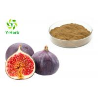 Buy cheap Leaf Or Dried Fig Fruit Extract Powder  High Purity Brown Fine Natural Supplement from wholesalers