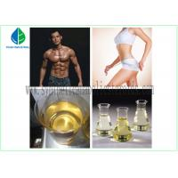 Medicine Chemical Testosterone Acetate 1045-69-8 Testosterone Steroid Hormone White Powder Purity 99% For BodyBuilding