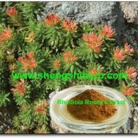 Buy cheap Rhodiola Rosea Extract from wholesalers