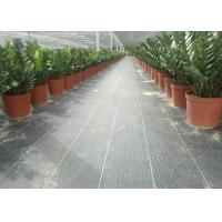Buy cheap Geosynthetic Fabric PP 130g Black Color 1m Width Weed Barrier For Anti Grass from wholesalers