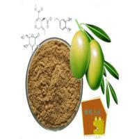 Buy cheap Olive leaf extract,PLANT EXTRACT,Solvent Extraction from wholesalers