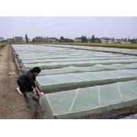 Buy cheap Green House Using Anti-insect screen 40x25 mesh,PE Plant Anti Insect Net from wholesalers
