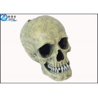 Home environmental products company quality home for Fish tank skull decoration