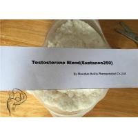Buy cheap Injectable Oral Anabolic Steroids Sustanon 250 Testosterone Blend product