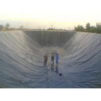 Buy cheap Waterproof Membrane from wholesalers