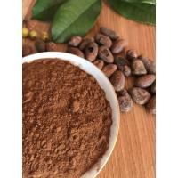 Dark Brown Unsweetened Alkalized Cocoa Powder Mild Flavor , Easy To Dissolve In Liquids
