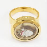 Buy cheap 316L Stainless Steel Floating Charm Memory Living Locket Ring TGLR011 from wholesalers