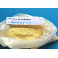 Buy cheap Yellow Trenbolone Enanthate Powder 99% CAS No: 472-61-546 high quality from wholesalers