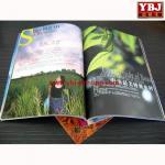 Buy cheap china guangzhou Cheap ybj Brochure & Flyer Printing Service from wholesalers