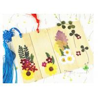Buy cheap Bookmark Decor Material Dried Flower Petal Crafts Home Decoration Accessories from wholesalers