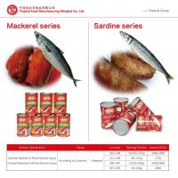 how to cook canned sardines in tomato sauce