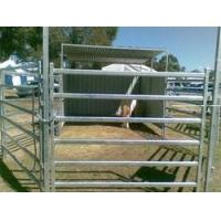 Buy cheap 6 Bar Heavy Cattle Panel from wholesalers