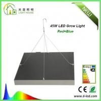 Buy cheap Energy Saving Waterproof LED Plant Grow Lights / Hydroponic LED Grow Lights 3W - 120W from wholesalers