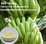 Buy cheap Calcium-B amino acid micronutrient for banana organic fertilizer factory from wholesalers
