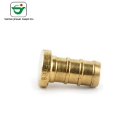 Buy cheap NSF Certificate 1/2 Inch Brass Water Pipe Fitting Copper End Cap from wholesalers
