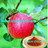 Buy cheap Apple Extract/ Apple Skin Extract product