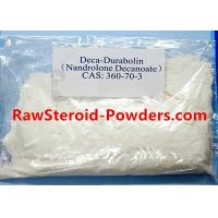 Buy cheap Raw Steroid Powders Deca Durabolin Nandrolone Decanoate Injection for Deca Test Cycle from wholesalers
