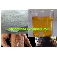 Buy cheap Injectable Anabolic Steroids Nandrolone Decanoate Injection 250mg/Ml For Muscle Enhancement from wholesalers