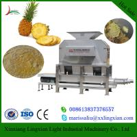 Buy cheap Pineapple processing plants and Machines Juice Production how to produce juice from wholesalers