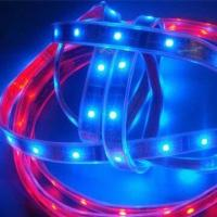 Buy cheap DC 12V LED Strip with 120° Viewing Angle and 3M Adhesive Tape on Back Side product