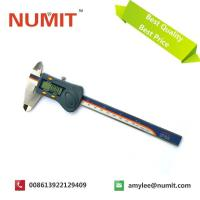 Buy cheap 0-300MM/12 Waterproof Electronic Digital Caliper With Battery 3V from wholesalers