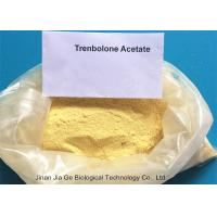 Buy cheap 10161-34-9  Anabolic Steroid Powder Finaplix Trenbolone Acetate for weight loss from wholesalers
