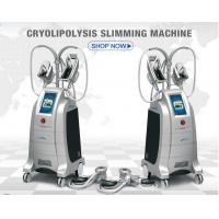 Buy cheap Cryolipolysis slimming equipment Europe popular 4 handpieces cryomed cryolipolysis rf slimming machine from wholesalers