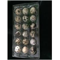 Buy cheap Disposable plastic quail egg tray 18 holes quail egg tray plastic egg tray for product