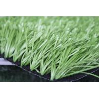 Buy cheap 50mm spine yarn field green /apple green  China Artificial grass flooring factory from wholesalers