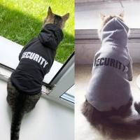 Buy cheap Eco Friendly Cute Cat Hoodie , Warm Pet Costumes For Small Dogs from wholesalers