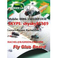 Buy cheap Fly and Flies Tray Mobile: 0086-15010691838 Email: rachel@bjgreenleaf.com from wholesalers