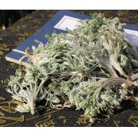 Buy cheap Capillary Wormwood Herb oriental wormwood capillary Artemisia capillaris Thunb whole plant Yin Chen Hao from wholesalers