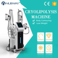 Buy cheap Professional four cryo handles cryolipolysis slimming machine for lose weight and body slimming from wholesalers