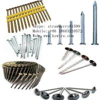 Buy cheap Roofing Nails/Common Nails/Strip Nails product