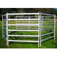Buy cheap Eco Friendly White Color Sheep Fence Panels 1000X2100mm By Square Tube from wholesalers