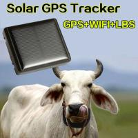 Buy cheap Mini Solar Animal Gps Tracker , Real Time Animal Tracking Device For Cattle Horse Camel from wholesalers