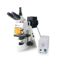 Buy cheap XYL-146Y Epi-fluorescent microscope from wholesalers