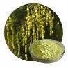 Buy cheap Medicine Grade Yellow Crystalline Kaempferol Powder from wholesalers