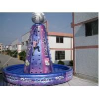 Buy cheap Violet Giant Inflatable Sports Games Amusement Park Equipment Violet from wholesalers